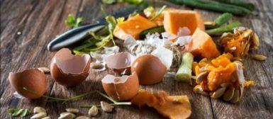 Desperdício de alimentos: seu lixo poderia alimentar outra família?