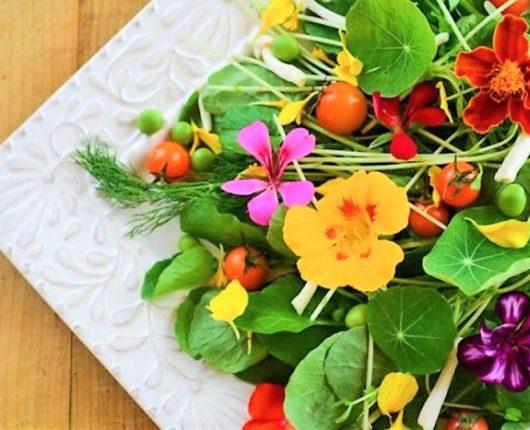 Dica da Nutri: aprenda a usar flores comestíveis