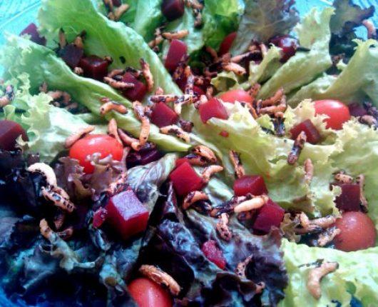 Salada colorida com crocante de arroz selvagem