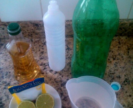 Fora da cozinha: receitas de produtos de limpeza caseiros